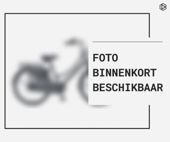 Daily Dutch Basic 22″ – 2020
